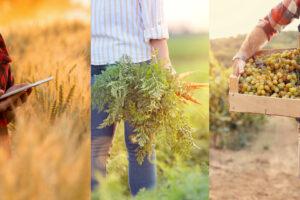 Grüne Bioagrarversicherung